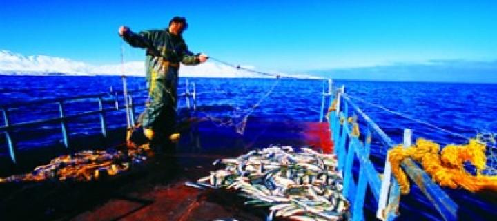 Van Gölü'nde Balık Tutuluuuur ?!…