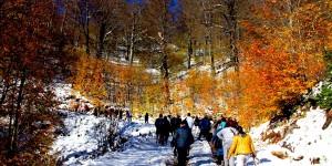 Kocaeli'de Yürüyüşler Tutkuya Dönüştü