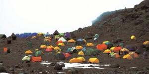 Kilimanjaro'un Karları