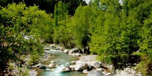 Nehirler Aka Aka / Ey Yolcu… Yürüyelim…