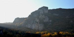 Manisa Çaldağ'da Bir Doğa Katliamı; Birçok Örnekleri Gibi