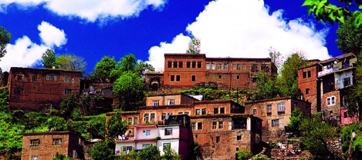 Bitlis'i, Bitlis Evleri Kurtarabilir
