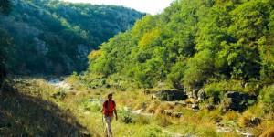 Çerkeşli – Kayalıtepe: 24 km