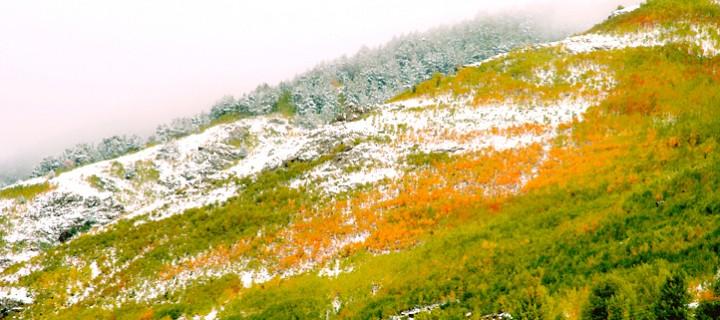 Gümüşhane Sarıçiçek Vadisi ve Dağlar