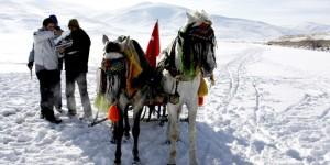 Dünya Sulakalanlar Günü Kars ve Ardahan'da Kutlandı