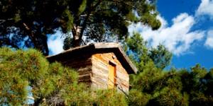 Beş Yıldızlı Eko Köy: HavaSu Köy