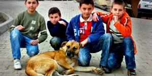 Çocukların Hayvan Sevgisi Fotoğraflara Yansıdı