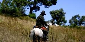 'Bir atla antik Likya Yolu'nu yürümek artık bir rüya değil!'