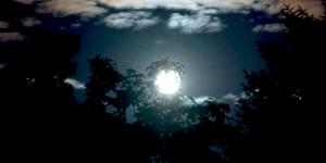 Gecenin Beyazı