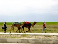 Cihanbeyli'ye 18 km