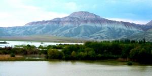 Nallıhan'ın Dağı da, Oyası da Rengârenk