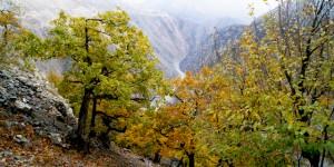 Doğa ve İnsan Mücadelesi