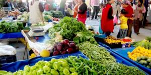 Küresel Organik Tarım ve Türkiye