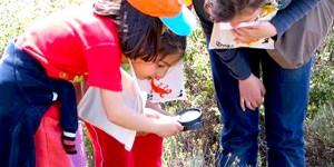 Doğa Çantam Eğitici Eğitimi Başlıyor