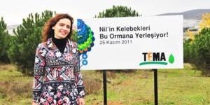 Nil'in Kelebekleri Gebze'de TEMA Ormanı'na Yerleşiyor