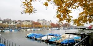 Kuğu Cenneti Zürich