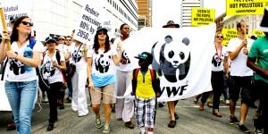 Durban'da Dünya Daha Çok Isındı