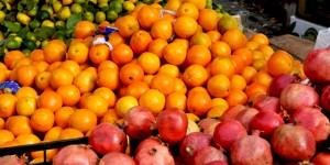 Balat'ta Yeni Bir Proje Filizlendi: MeyveHane!