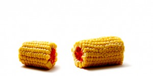 Biyoteknoloji Şirketlerinden GDO Masalları