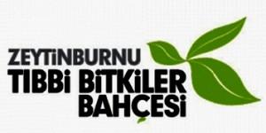 Doğal Kozmetik Atölyesi, Zeytinburnu Tıbbi Bitkiler Bahçesi'nde