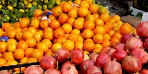 Zeytinburnu Organik Halk Pazarı'nda Tohum Ekim Etkinliği