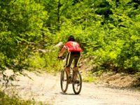 Motosiklet, Bisiklet Ve Aksesuarları Fuarı