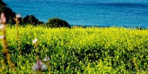 Nisan Ayında Akdeniz'de Olmak