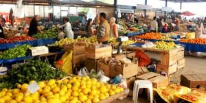 'Gıda Egemenliği İçin Toplum Destekli Tarım ve Diğer Dağıtım Sistemleri' Toplantısı