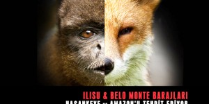Hasankeyf ve Amazon için Küresel Kampanya Başlıyor