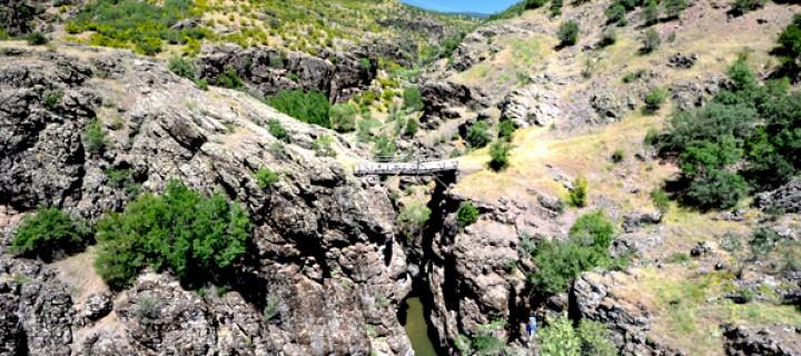 Cin Köprü