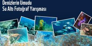 Fotoğraflarınız Denizlere Umut Olsun