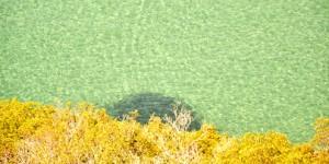 Ege'de Doğal Bir Doğa Müzesi: Dilek Yarımadası Milli Parkı