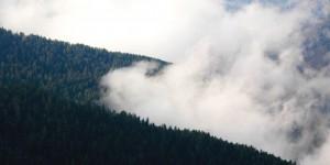 'Dağlar Duman Olursa Önüme'