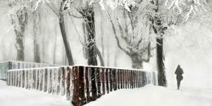 Dört Mevsim Fotoğraf Yarışması Başvuruları Devam Ediyor
