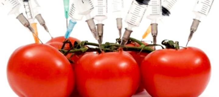 Genetiği Değiştirilmiş Ürünlerde Etiketleme, Neden Monsanto'nun En Kötü Kâbusu?