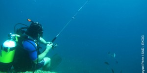 'Sorumlu Amatör Balıkçılık' Projesi Başlıyor