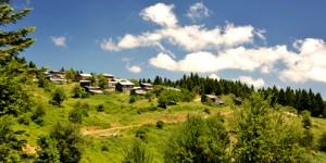 Kırsal Kalkınmada Alternatif ve Yeni Yaklaşımlar