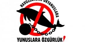 Yunus Parkı İşletmecilerine Suç Duyurusu Yapıldı