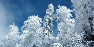 2 Ocak / Rüzgârlı Fırtına
