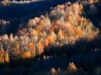Sonbaharın Son Günleri ve Samanlı Dağları