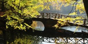 Yedigöller, Güz ve Ahşap Köprü