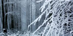 Samanlı Dağları Kar Altında