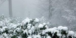 Kar Yağmış Yüce Dağlar Başına