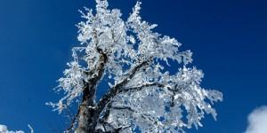 8 Ocak / Zemheri Fırtınası (30 Ocak'a kadar)