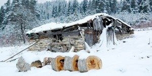 Bolu Yaylalarında Kış
