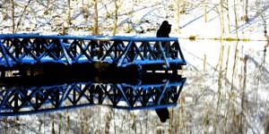 Yedigöller'de Kar İle Karşılaşmak