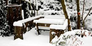 7 Şubat / Soğukların Artması