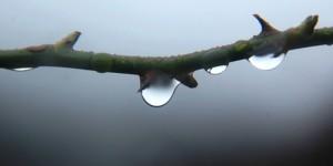27 Şubat / 2. Cemre Suya Düştü