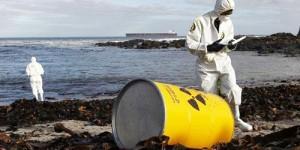 Fukuşima Nükleer Felaketi'nin İkinci Yılı