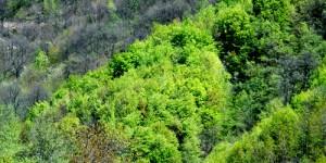 Samanlı Dağları, Gizli Bahçe ve Bahar